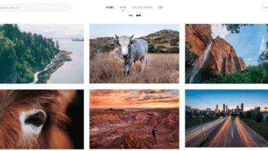 مواقع للحصول على صور احترافية مجانًا